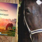 Für euch gelesen: Geschichten aus der Pferdeklappe