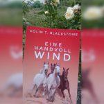 Für euch gelesen: Eine Handvoll Wind
